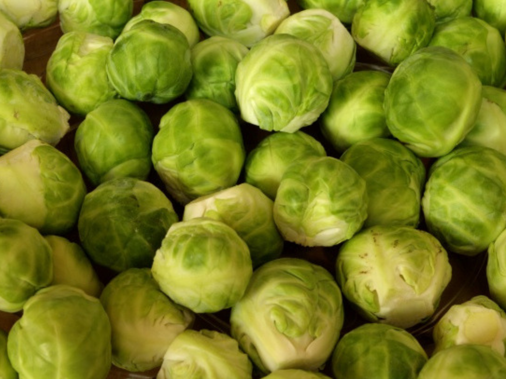 tvfbrusselssprouts