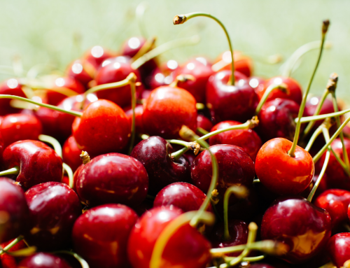 Summer Bounty: How To Make Fresh Cherries Last
